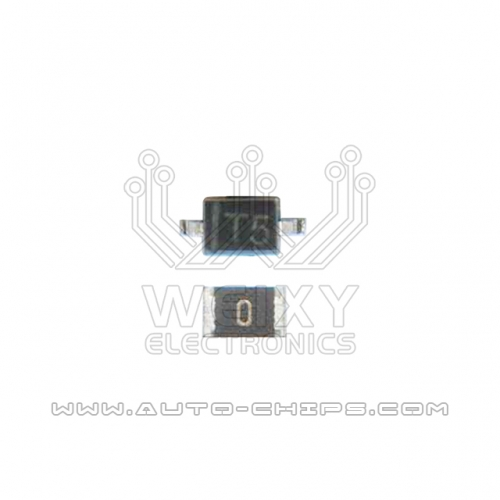 T5 2PIN & 0 ohm resistor for Porsche BCM