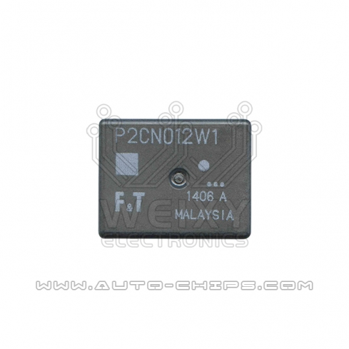 P2CN012W1 relay use for automotives BCM